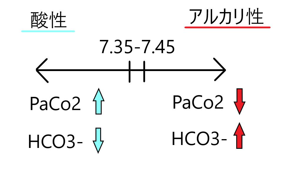 酸塩基平衡